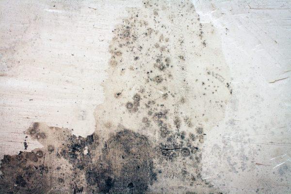 Wilgoć w łazience – przyczyny i sposoby usunięcia